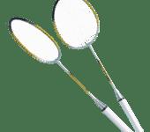 Badminton Set Pro
