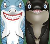 bodyboard shark/orka